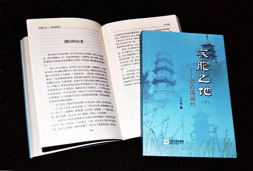 王宇明的书