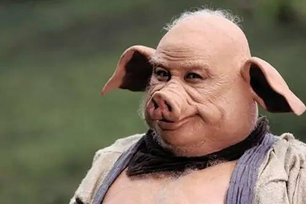 猪八戒原型是我国原产的黑猪,额头像寿星一样突出,还有皱纹